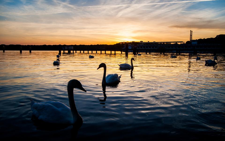 Abendstimmung am Tegeler See